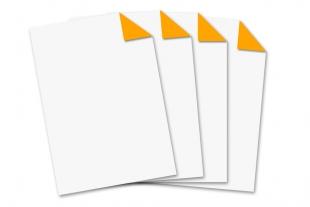 Briefbogen DIN A4 »einseitig bedruckt neonorange«